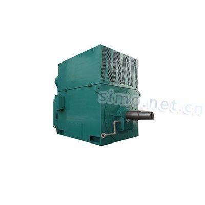 YR5602-6-1120KW-6KV-IP54-F-S1-SKF进口轴承绕线高压电机